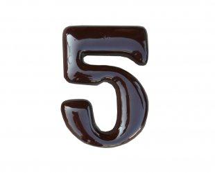 wodna 55